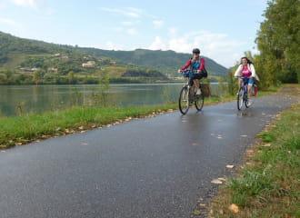 La ViaRhôna de Vienne en Avignon - Cyclistes le long du fleuve