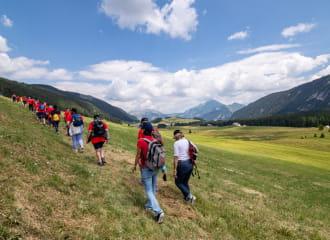 randonneurs au Plateau des Glières