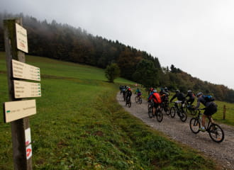 Vallée Verte Bike Tour